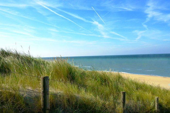dune-entretien-milieu-marin