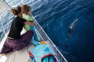Voyager sur un voilier à travers le monde