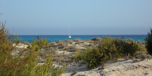 Photo de la plage d'Es Trenc, où navigue un bateau au loin.