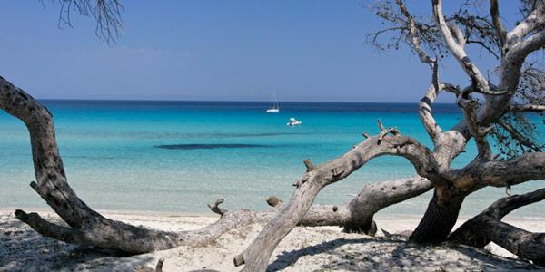 La plage de Saleccia en Corse où naviguent des bateaux